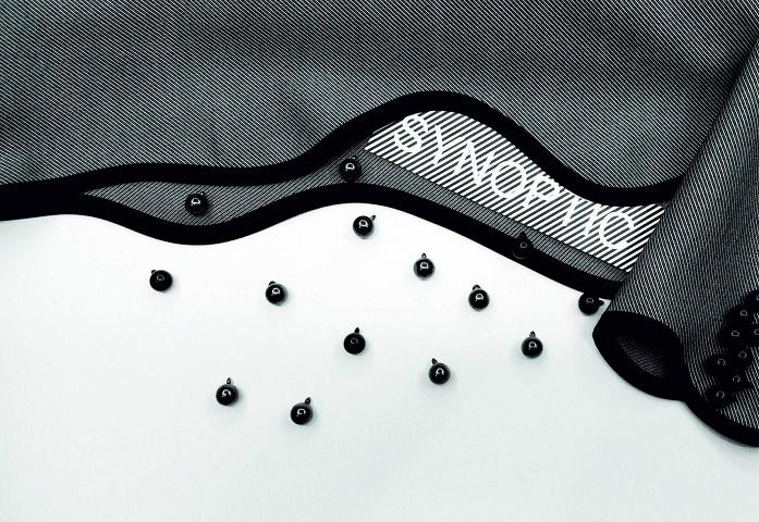 pokaz-synoptic-1